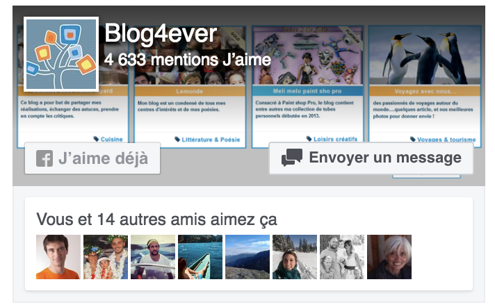 Comment Inserer Un Widget Page Plugin Facebook Sur Son Blog