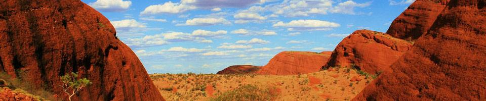 chenouard eric  blog Art terre